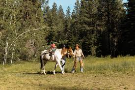 horseback riding sun mountain lodge resort and cabins