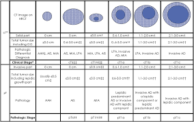 lepidic pattern meaning the iaslc lung cancer staging project proposals for coding t