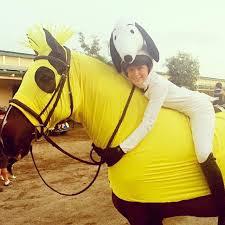 Horse Jockey Halloween Costume Halloween Costumes Horse Yup U0027re