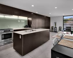 Acrylic Kitchen Cabinets Pros And Cons Kitchen Truly Amazing Glass Backsplash Kitchen Glass Tile