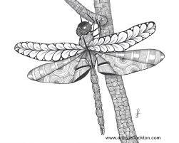 tangled coloring book dangling dragonfly 44 at www artbyjoflockton com tangled art
