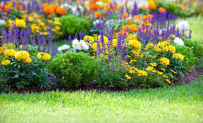 Preparing Your Home For Spring Home Dzine Garden Prepare Your Garden For Spring