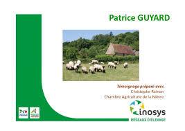 chambre d agriculture de la nievre signaux au vert pour l élevage ovin témoignage patrice guyard