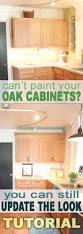 update builder grade cabinets fast without painting oak cabinets