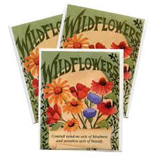 wildflower seed packets free package of wildflower seeds freebie