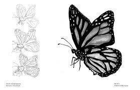 animal anatomy monarch butterfly by artisteassassin on deviantart