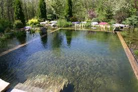 Pool Designs For Backyards 67 Cool Backyard Pond Design Ideas Digsdigs