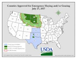 emergency haying and grazing resources cropwatch of