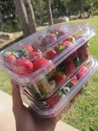 Decorative Ways To Cut Strawberries Strawberry The Lazy Cook U0027s Recipes