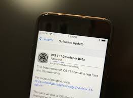how to install the ios 11 1 beta
