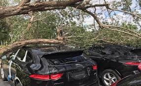 lexus dealership panama city fl irma forces dealerships ports to close