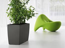 download modern plant garden design