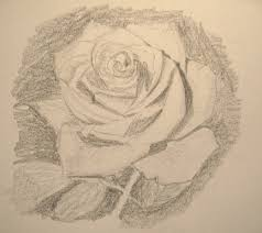 how to draw realistic roses feltmagnet
