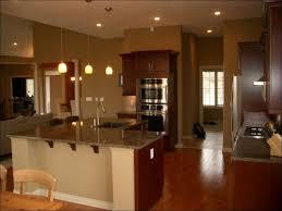 kitchen chandelier lighting dining room red pendant light