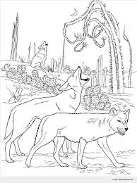 awesome wolf color image wonderful coloring pages