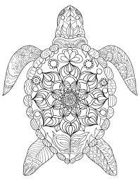 free printable sea turtle coloring download pdf