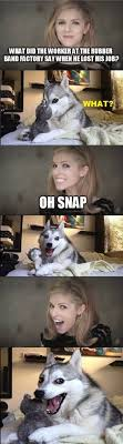 Pun Husky Meme - everest the pun dog home facebook