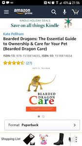 bearded dragon lighting guide bearded dragon care guide filled with b s bearded dragon org
