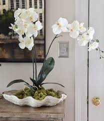 faux orchids orchids in a shell diy stonegable