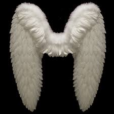 wings dreamangels