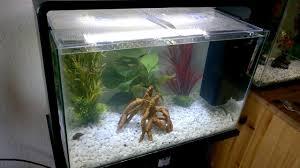 Home Aquarium Superfish Home 60 Aquarium Youtube