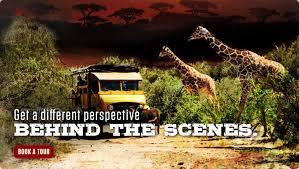 Arizona wildlife tours images Wildlife park in arizona out of africa jpg