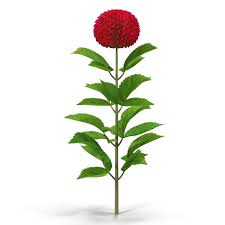 metal flower garden stakes 3d dahlia red cgtrader