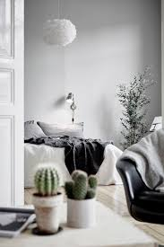 interior design minimalist interior design pinspiration the minimalist kaktus rostliny a
