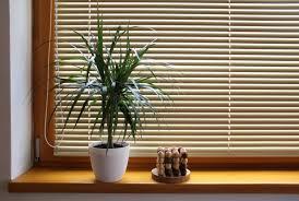 Wooden Curtains Blinds Wooden Blinds Dubai Dubai Furniture