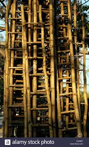 Salesladder Ladder Made Up Of Bamboo Tree On Sales Lot Of Bamboo Ladders View