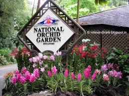 Botanical Gardens In Singapore by Miles And Trails Singapore Botanic Gardens Singapore