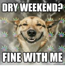 dry weekend fine with me meme tom meme on sizzle