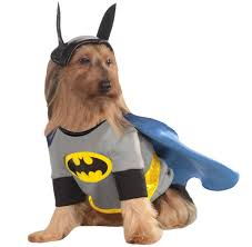 Halloween Costumes Large Dogs Dog Costumes Dog Halloween Costumes Pets