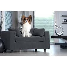 repulsif chien canapé canape pour lit pour chien original repulsif canape pour