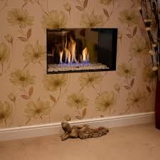 Gas Fireplace Flue by Gas Fireplace Contemporary Original Design Traditional