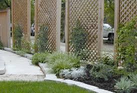 remarkable home backyard design with green garden design plus