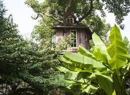 annapolis families climb into their private treehouse retreats