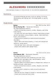 hairdresser cv example stylist resume skills hair stylist resume