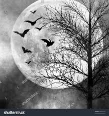 halloween background bats halloween background bats flying night full stock photo 81044773