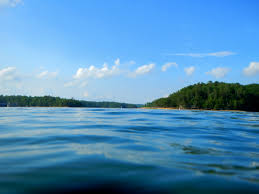 Kentucky beaches images Swimming in lake laurel river another walk in the park jpg