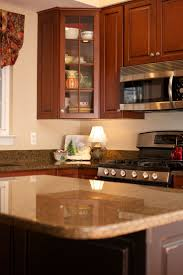 Frosted Glass Kitchen Doors by Kitchen Cabinet Doors With Glass Panels Tags Astounding Glass