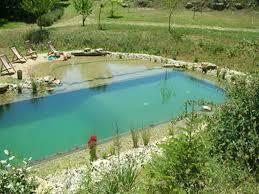 natural swimming pools u2014 amazing swimming pool