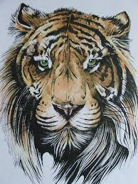 91 best tiger designs for carthage images on drawings