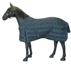 Outdoor Rugs For Horses Oberlo Manage Products Import List Dem Horses