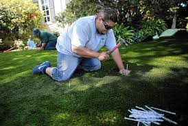 a guide to rebates on drought tolerant landscaping la times