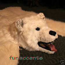 Taxidermy Bear Rug Bear Skin Rug Ebay