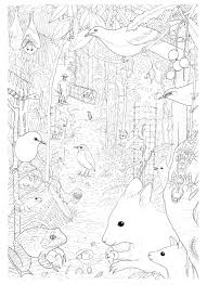land for wildlife colouring pages u2013 paperbark writer