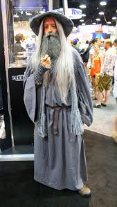 the grey cosplay costume
