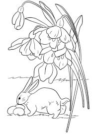 easter bunny eggs coloring free printable