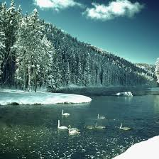 is u s highway 20 going through yellowstone park open in winter
